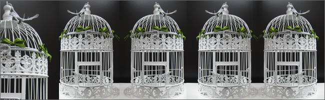 Birdcages For Hire