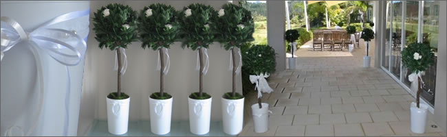 Bali Flag Hire Topiary Trees For Wedding Auckland